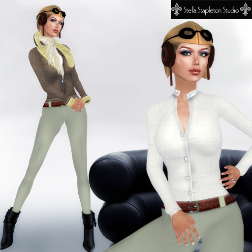 amelia the pilot 2