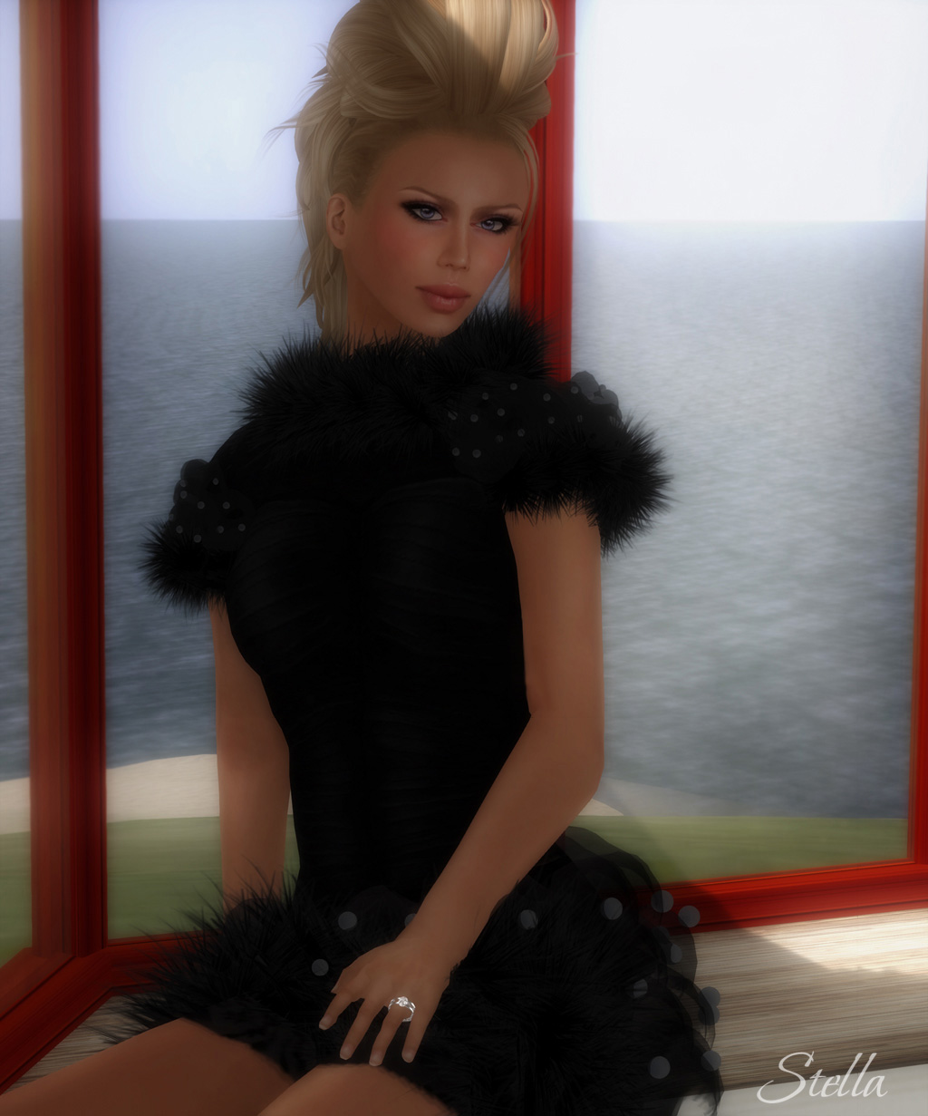 SHIKI Couture dress Chat Noir